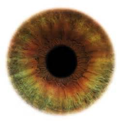 human eye colors cool pics cool pictures cool photos cool images