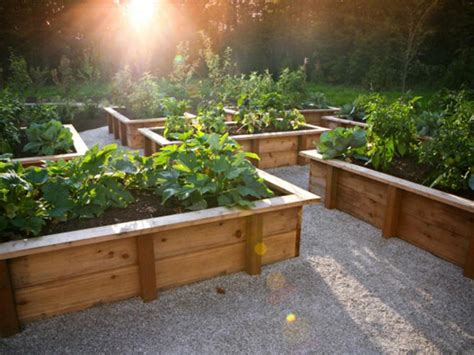 Tips For Creating Raised Bed Planters Diy Creating A Vegetable Garden