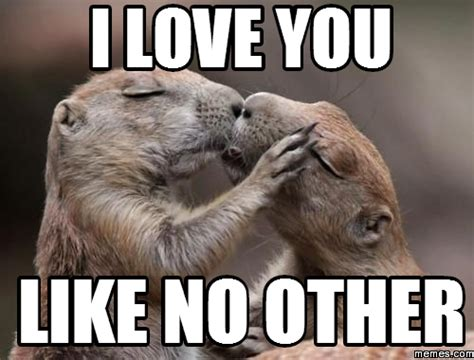 Meme Love - animal i love you memes