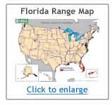 python range map