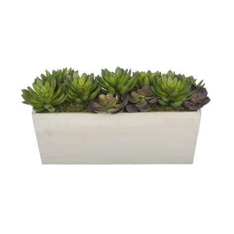 decorative indoor plants house of silk flowers artificial succulent garden desk top plant in decorative vase reviews