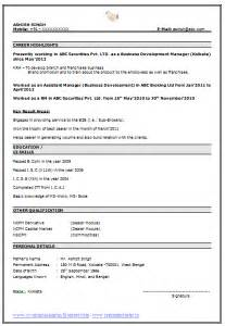 Best Resume Sample In Doc by Best Resume Format Resume Cv