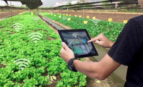 mobile agriculture  egypt ecomena