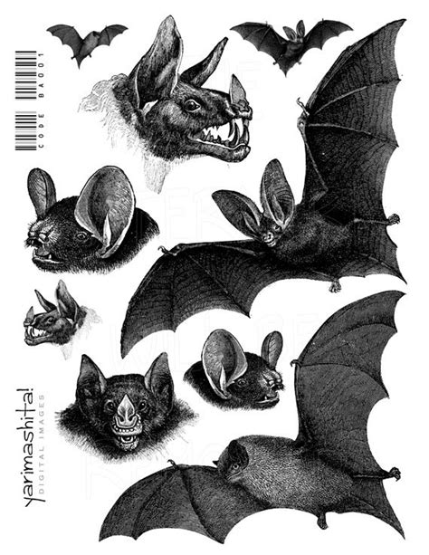 printable halloween decorations black and white items similar to bat vintage images halloween black and