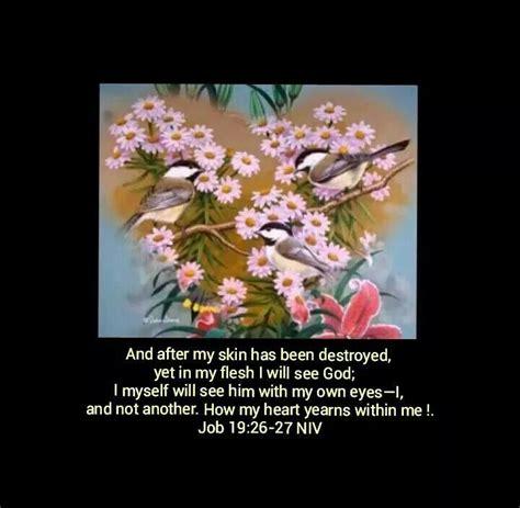 pin  flowers bible verses
