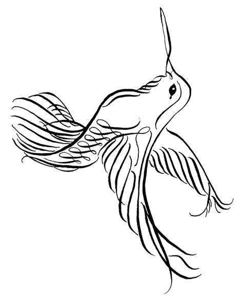 Hummingbird Pictures Clip Art Cliparts Co Hummingbird Coloring Pages