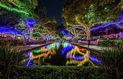 dallas zoo lights goff website
