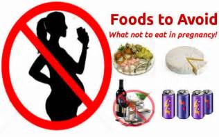what are the foods to avoid during pregnancy fish and seafood