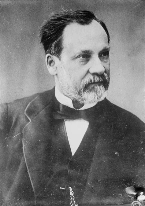 louis pasteur facts louis pasteur facts louis pasteur for kids dk find out