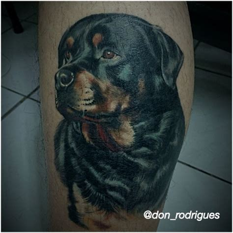 rottweiler tattoo american history x tattoo cicatrizada rottweiler tattoo pinterest