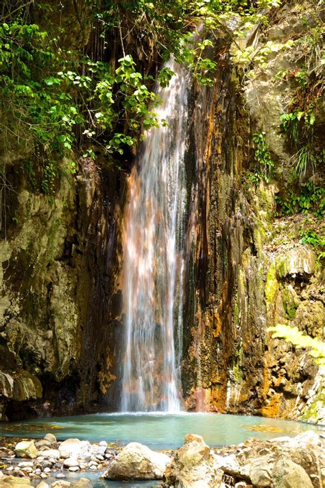 the most beautiful botanical garden of the caribbean
