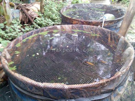 Drum Plastik Baru Dan Bekas harga jual drum tong bekas jual drum baru dan bekas