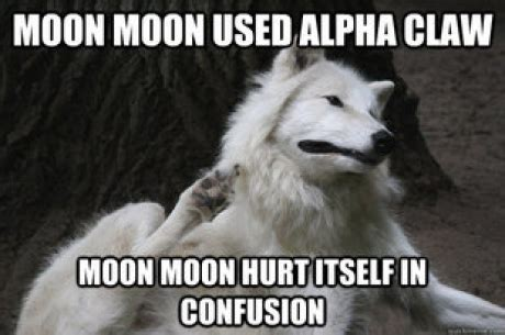 Wolf Meme - image 534293 moon moon know your meme