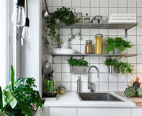 ideen für die verzierung des badezimmers k 252 che mit kr 228 utergarten dekorieren tipps und diy ideen
