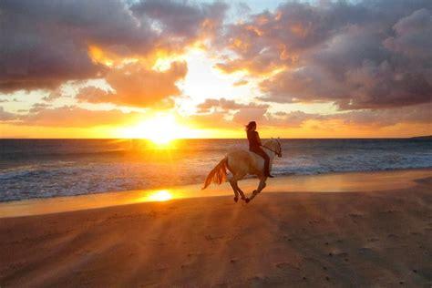 cing bungalow cabo de gata horseback riding makanas beach bungalows