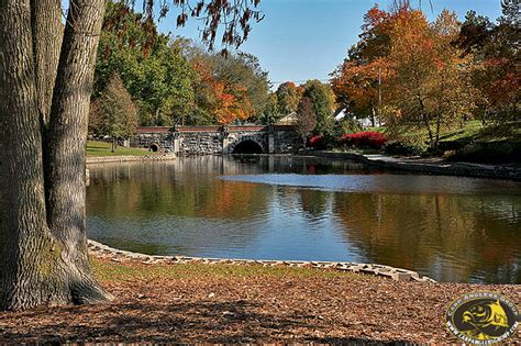 bloomington park miller park lake bloomington il dr frank rink members picture gallery carp