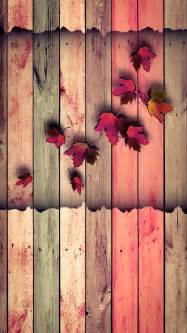 Top collection of autumn wood wallpapers pack v 72
