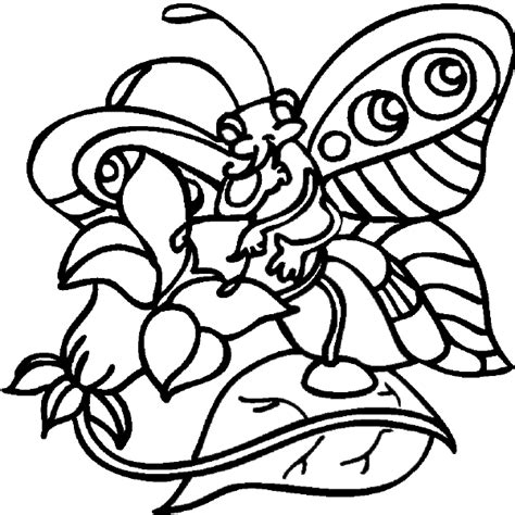 butterfly rainbow coloring page rainbow and butterfly coloring page