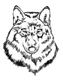 wolf coloring book prince albert model forest colouring book