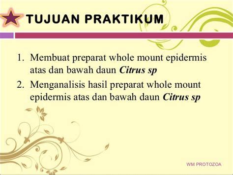 Alkohol Murni 96 ppt mikroteknik whole mount protozoa dan whole mount epidermis