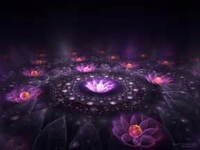 lotus of light wallpaper 19521541 fanpop