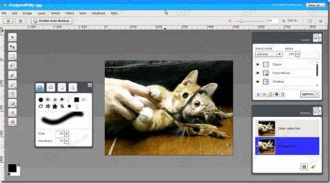 aviary photo editor online image editing free online 5 best free tools