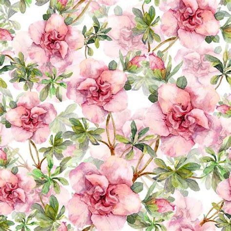 koleksi wallpaper dinding flower wallpaper rumput