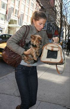 famous people who own yorkie poms 1000 images about quot famous quot yorkies on pinterest yorkies