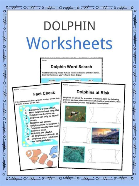 dolphin facts worksheets species habitat  kids