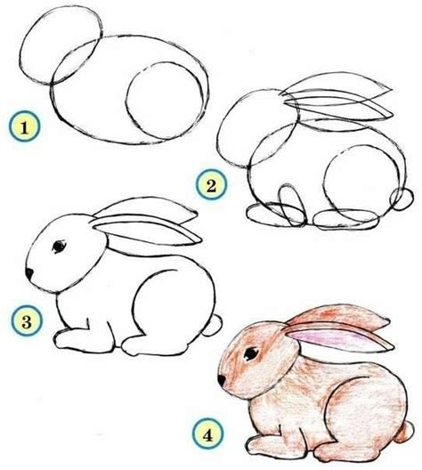 let s draw bunnies 35 step by step bunny drawings books how to draw a bunny drawing ideas a bunny