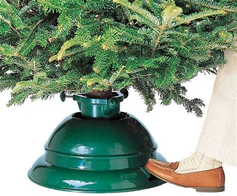 christmas tree water mixture 25 best ideas about real tree on real trees outdoor trees
