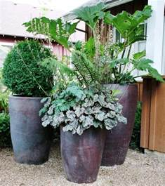 large garden pots and containers image of potted plants shade container garden potted