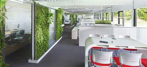 best desk plants no light best 25 office plants ideas on pinterest plants indoor