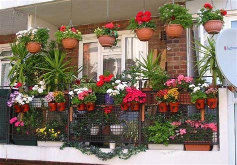 Pupuk Untuk Bunga Agar Subur bagaimana cara pemeliharaan tanaman agar tumbuh subur ini