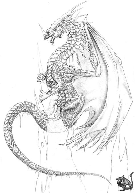ice dragon coloring page ice dragon scrap by sheranuva on deviantart
