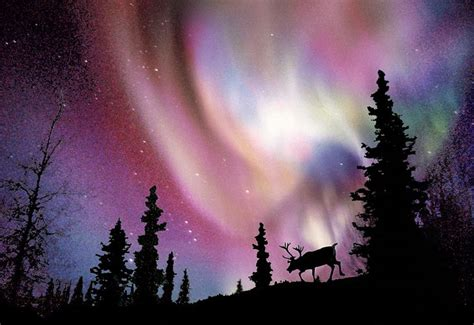 When Are The Northern Lights In Alaska by Northern Lights Alaska Search Alaska Sights