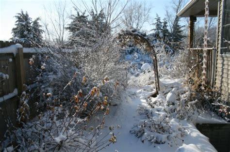 Garten Im Winter Gestalten by Schmetterlinge Im Garten Anlocken Erfreuen Sie Ihre Augen