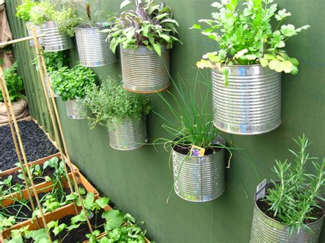 recycled garden another great way to recycle your cans roots