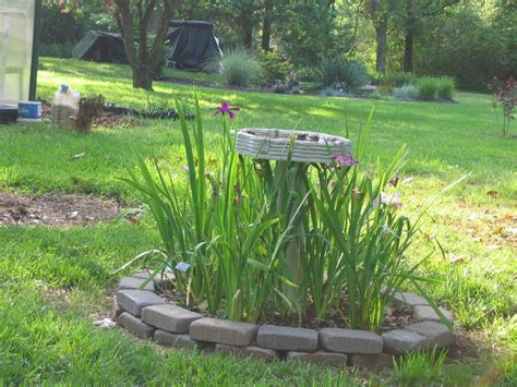 landscaping photo of quot bird bath quot posted by terry
