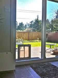 glass door with pet door built in diy doggie doors for sliding glass doors build in installation
