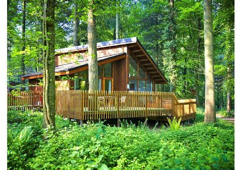 Cottages In Forest Of Dean by Forest Of Dean Cabin Hideaways