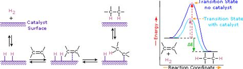 hydration and hydrogenation alkene reactivity