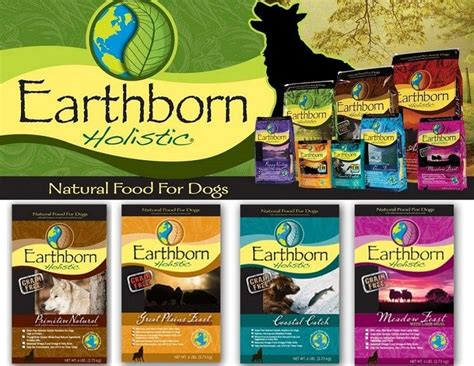 earthbound food healthiest food brands the top 10 on the market
