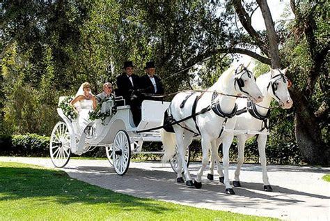 Best 25  Wedding carriage ideas on Pinterest   Luxury