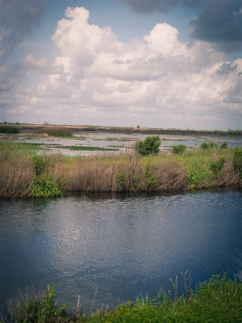 Louisiana Landscape Pictures From Boudin Crawfish Ponds To Bbq Cotton Fields The