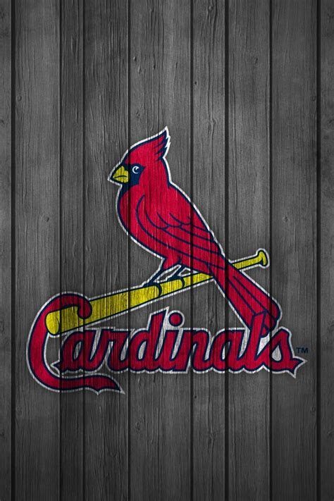 42 units of st louis cardinals wallpaper st louis