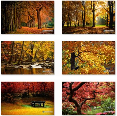 microsoft themes autumn download autumn themes for windows download pureinfotech