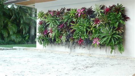 vertical garden miami coral gables green wall tropical landscape