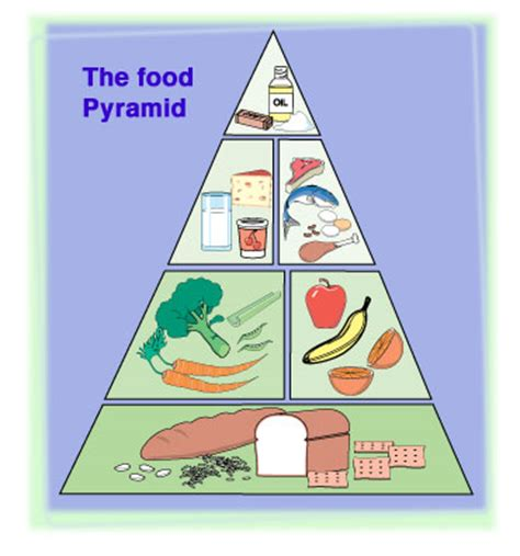 carbohydrates ks2 diet and diabetes