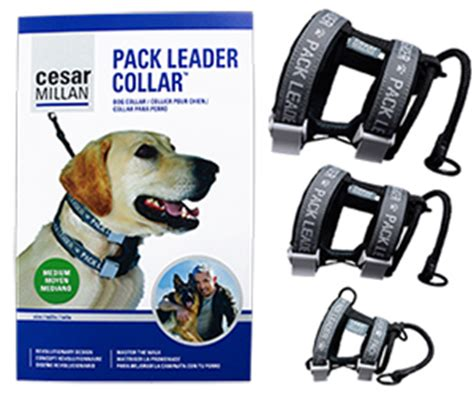 cesar millan collar new product cesar millan pack leader collar petmeds 174 pet health